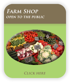 Farm shop at Horners Farm in Co. Down